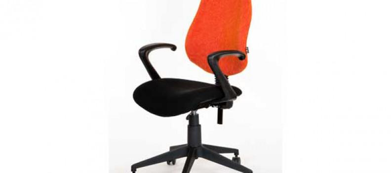 Ergo Flex Low Back Chair